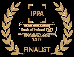 ippa_finalist